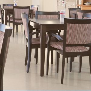 European Beech Timber Chairs